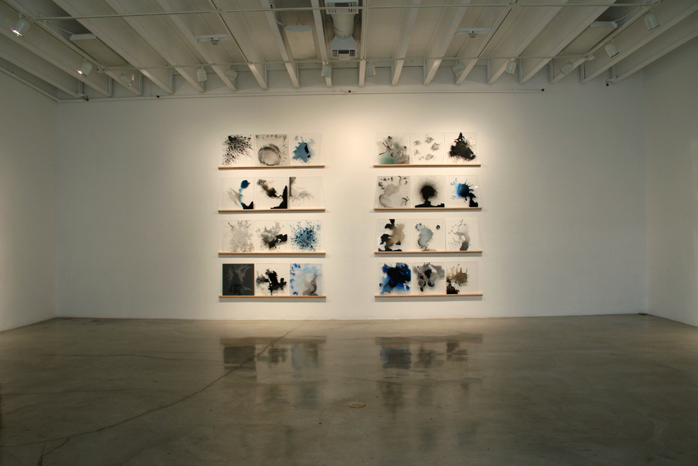 Variant Evolution, installation view